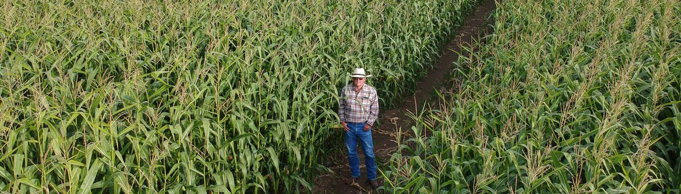 farming & nutrition